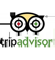 Tripadvisor-homepage