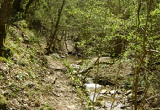 trekking-4